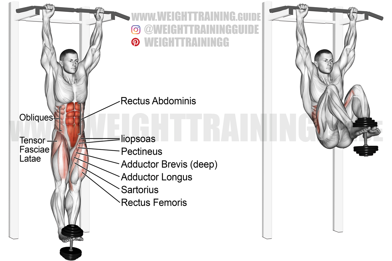 Weighted hanging leg and hip raise exercise