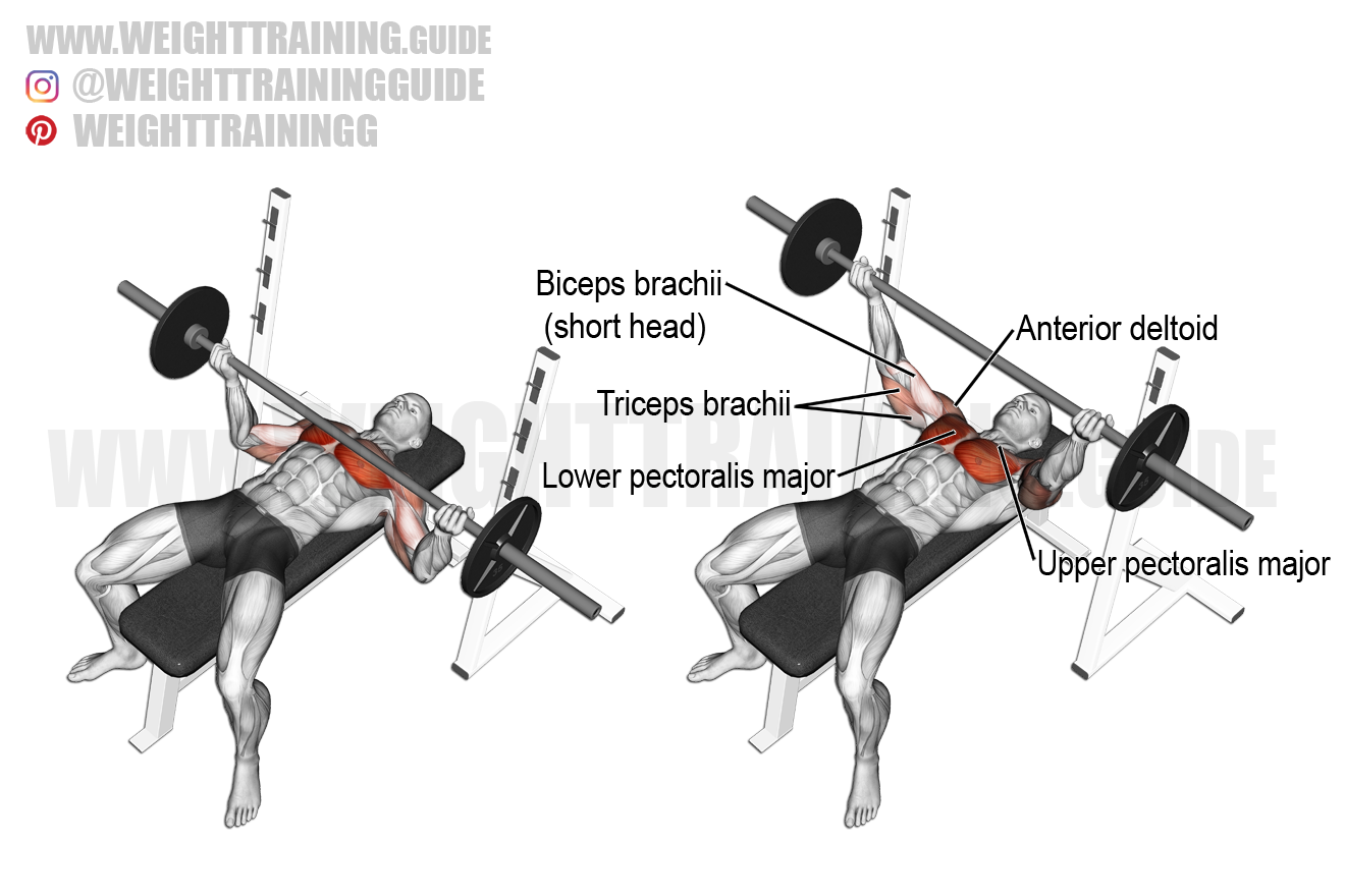 Wide reverse-grip barbell bench press exercise