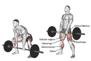 Barbell sumo deadlift exercise