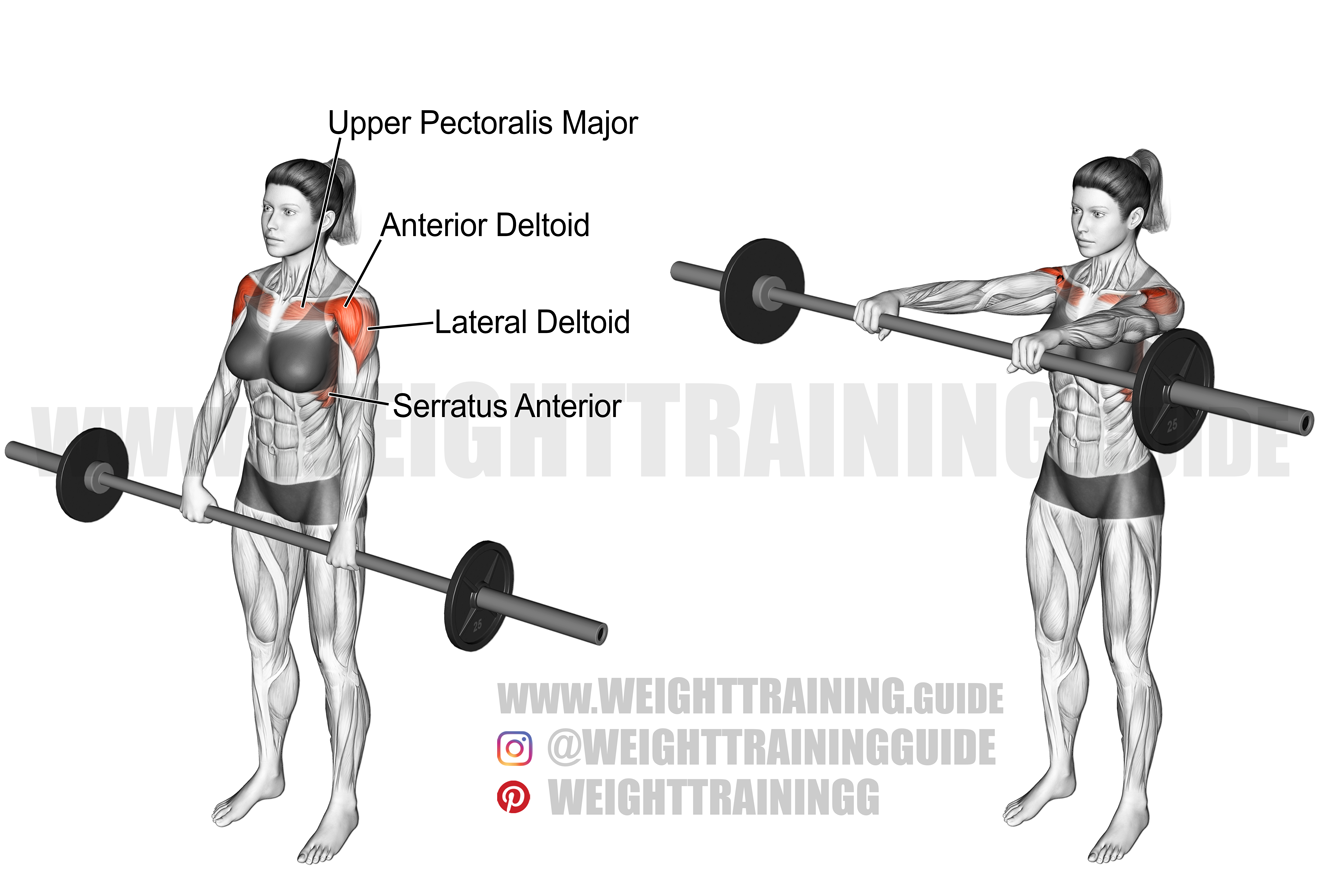 Barbell front raise exercise