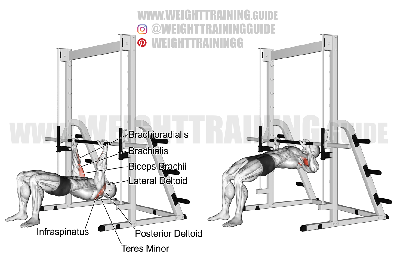 Bent-knee inverted rear delt row exercise