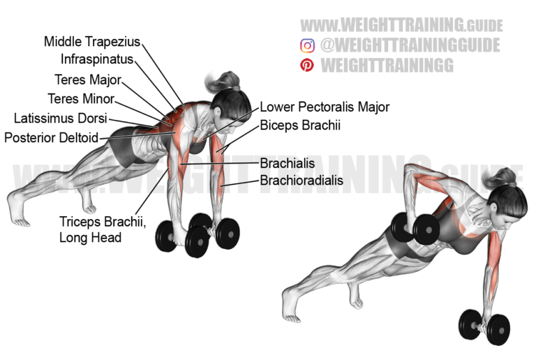 Dumbbell renegade row