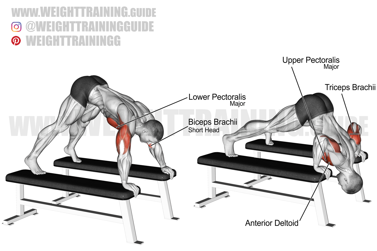 Pike push-up exercise