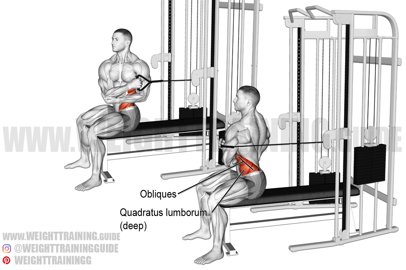 Seated cable cross-arm twist exercise