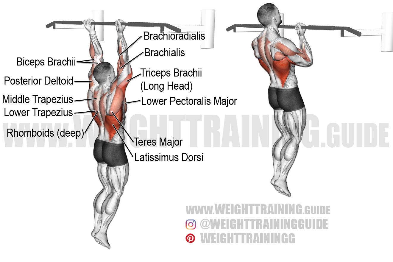 Chin-up exercise