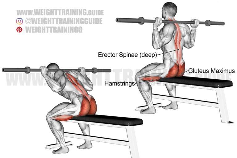 Seated barbell bent-knee good morning