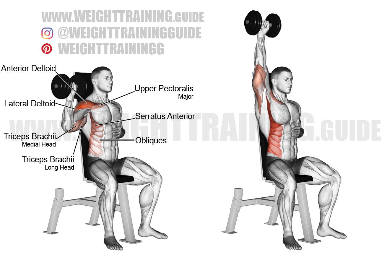 Seated dumbbell one-arm shoulder press exercise