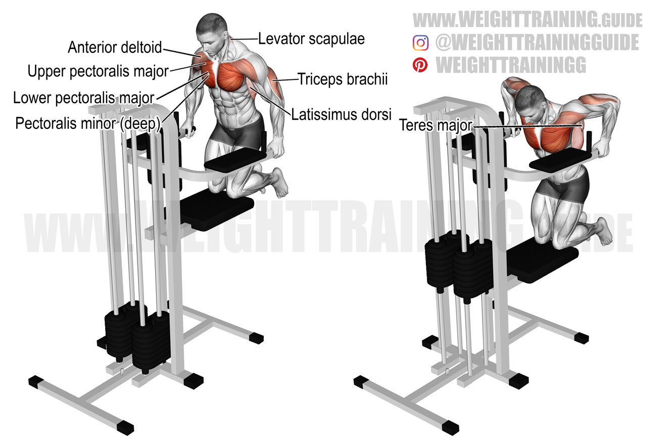 Machine-assisted chest dip exercise